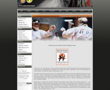 screenshot-www.okinawakarate.pl 2014-08-25 10-58-52